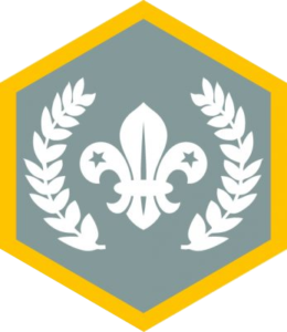 Cuffley, cuffley-scouts, Scout, Chief Scout Silver Award, Cubs, Boys, Girls, Local Cub Pack, 8 years, 9 years, 10 years, badges