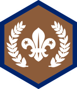 Chief Scout Bronze Award, Beaver, Challenge, award, achievement, badge, badges, programme, Beavers,