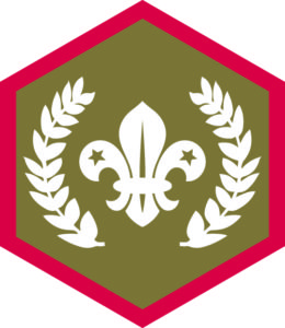 Chief Scout Gold Award, Challenge, Badge, Award, Scout, Scouts, Achievement