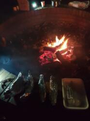 Fireandfood